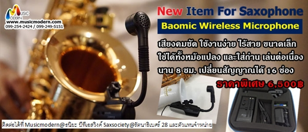 Baomic Wireless Microphone